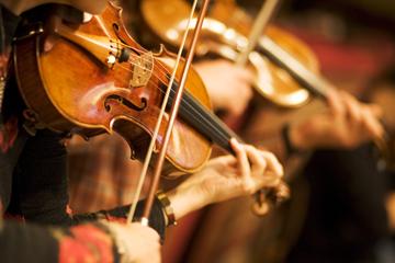 Wiener Symphoniker - Violinen - Instrumente