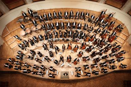 Wiener Symphoniker Orchesterbild